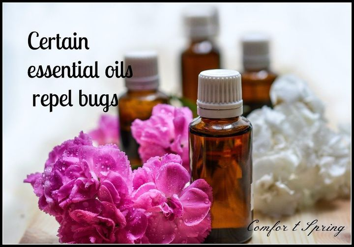 s easy diy remedies for your 7 most hated bugs, Repel Mosquitoes With Essential Oils