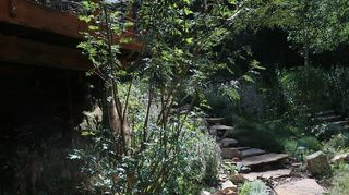 , Same idea curving pathway toward the house If you lay the pavers onto landscaping fabric or newspaper first you will prevent grasses from getting between the cracks and you can put pebbles to contrast