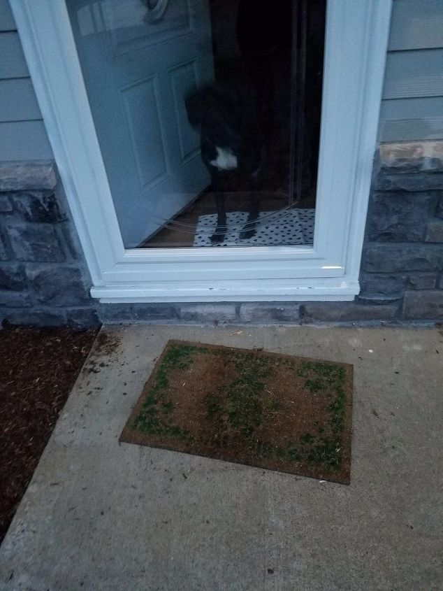 Whats An Inexpensive Way To Make A Half Step At My Front Door