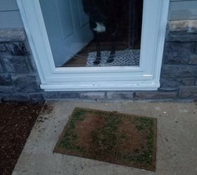 Whatu0027s An Inexpensive Way To Make A Half Step At My Front Door? | Hometalk
