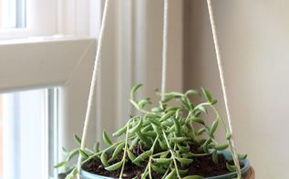 diy hanging succulent planter