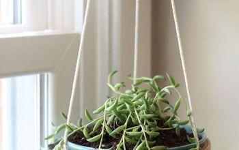 diy hanging succulent planter
