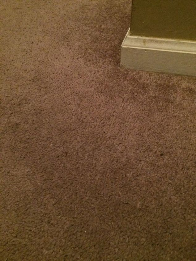 q can carpeting be painted