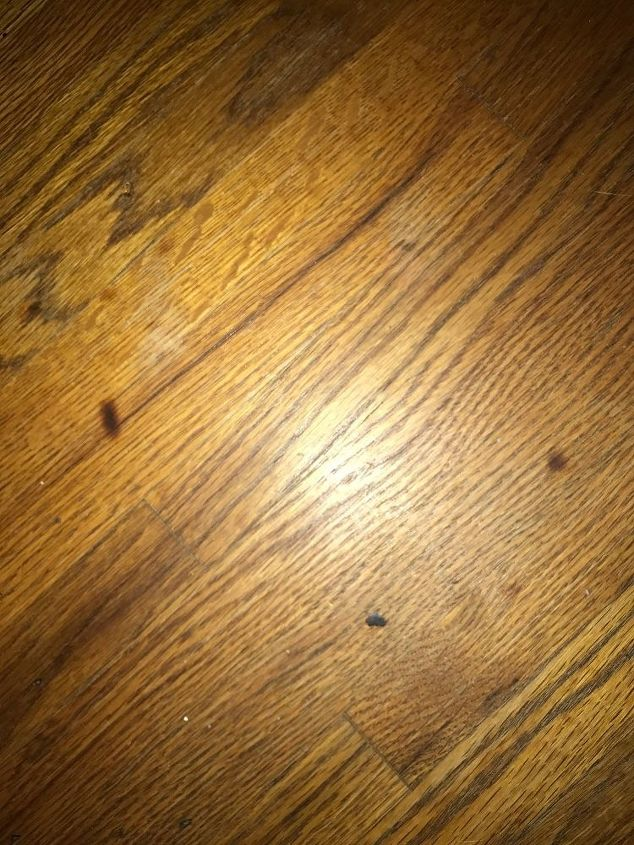 Repair Burn Marks In Hard Wood Floors