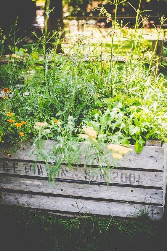 how to create a mini meadow