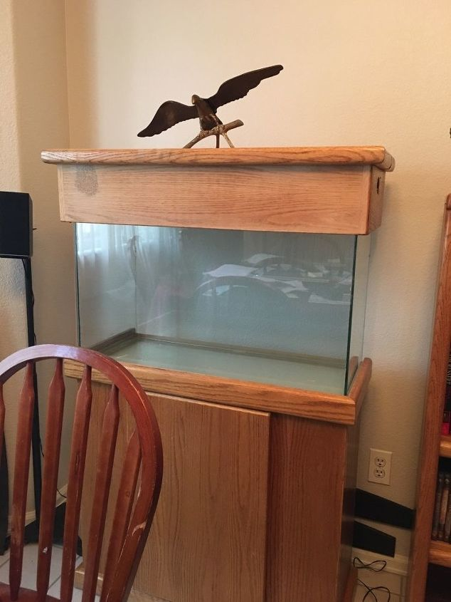 q ways to decorate aquarium
