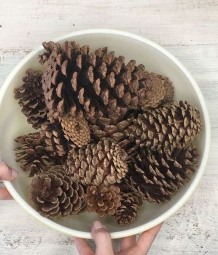 s 3 wreath ideas to brighten up your front door, Step 1 Get some pinecones in different sizes