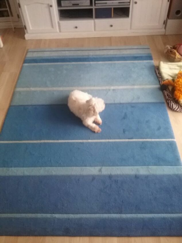 q change colour of rug