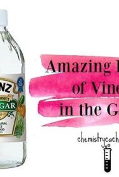amazing benefits of vinegar in the garden why it works