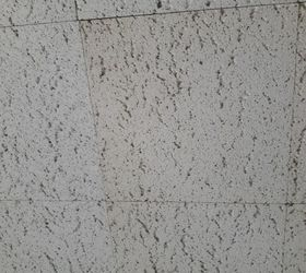 Good My Home Has Old Ceiling Tiles Throughout Most Of It. Is It Possible To  Repaint Them? With What Type Of Paint?