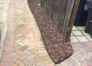 How to close the bag using a plastic bottle cap hometalk for Edging to keep mulch off sidewalk