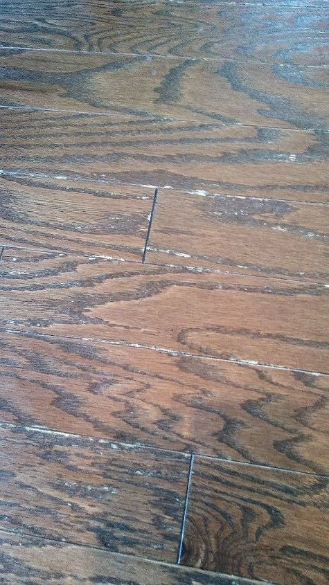 q engineered hardwood floor repair on a house less than 1 year old