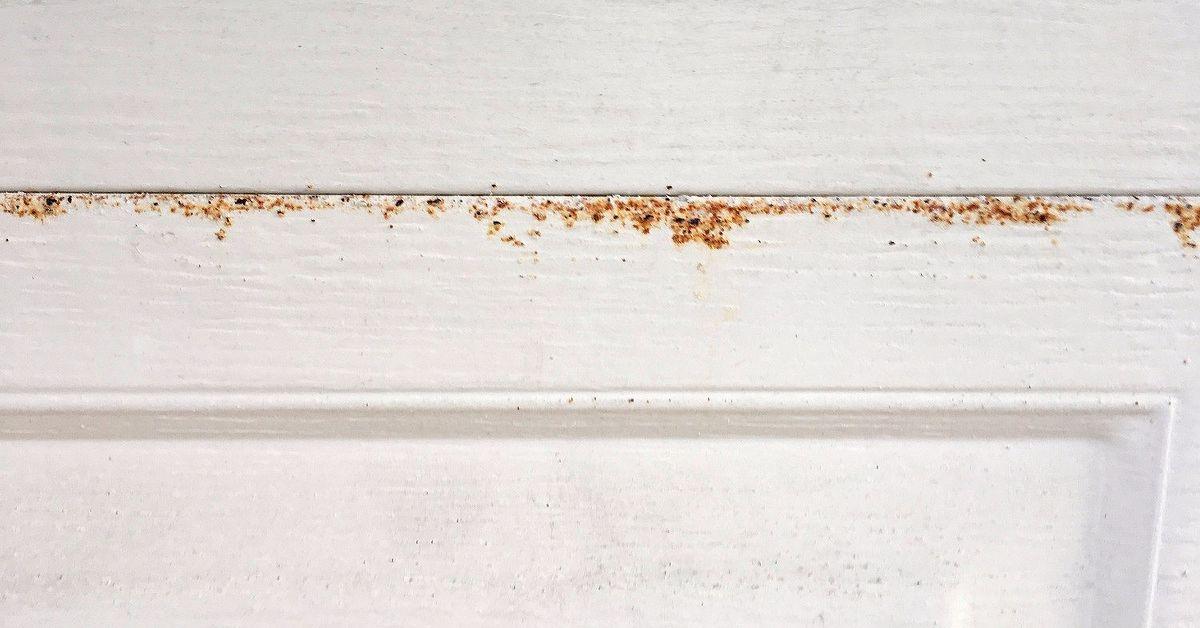 How To Paint A Rusty Garage Door Hometalk