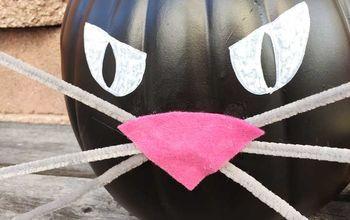 no carve black cat pumpkin