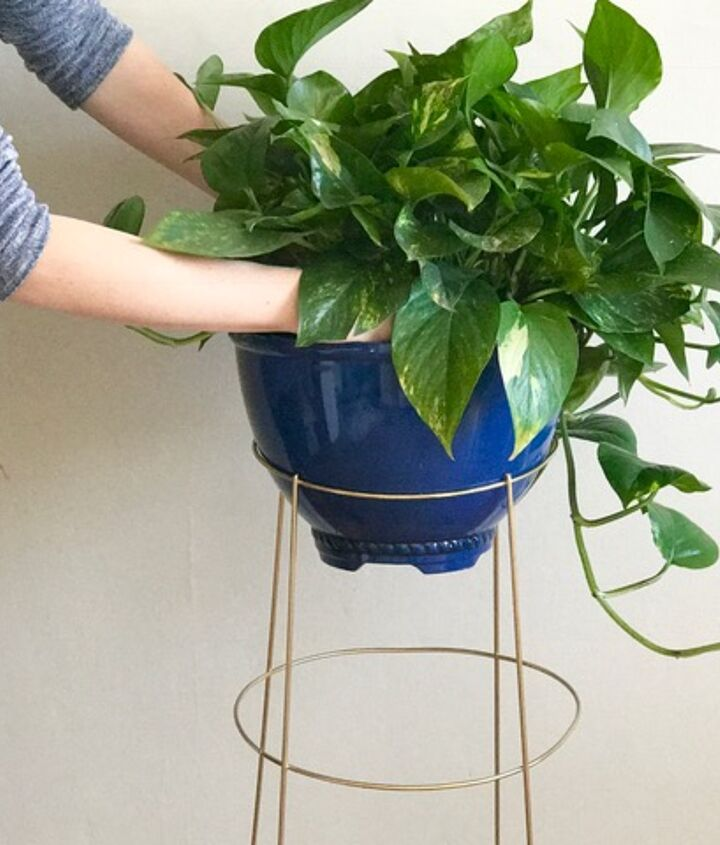 s 3 absolutely adorable ways to display your plants, Step 5 Insert your plant
