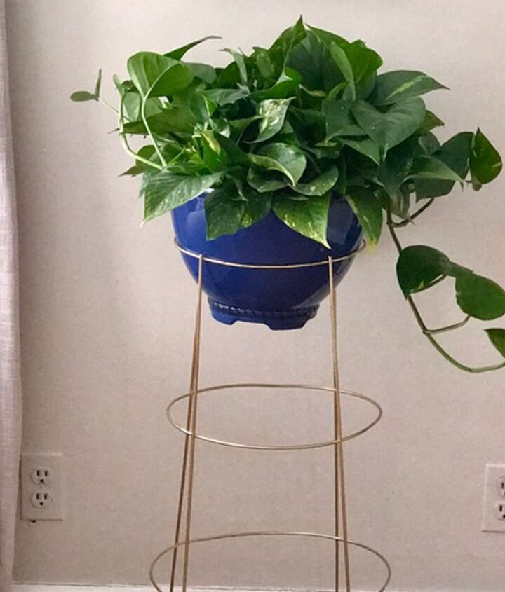 s 3 absolutely adorable ways to display your plants, Step 5 Admire the end result