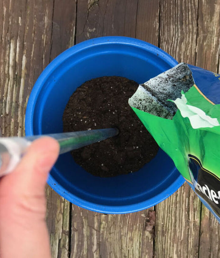s 3 absolutely adorable ways to display your plants, Step 2 Fill pot with soil insert rod