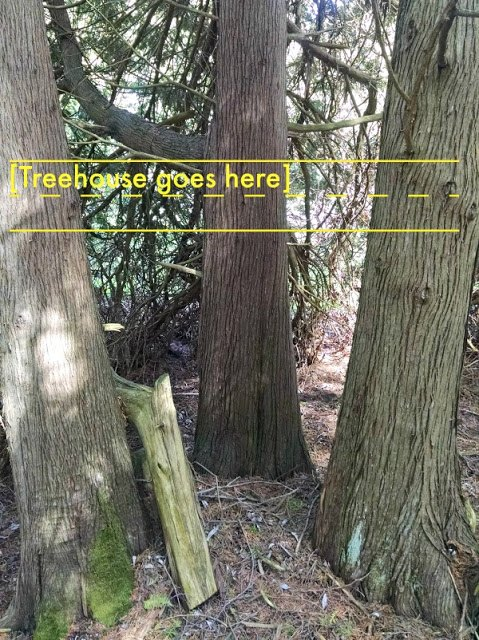essential tips how to build a treehouse your kids will love for years