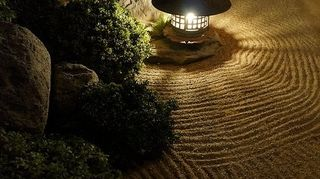 , Grouped against the house coming forward with the sand and rocks and various shrubs that tolerate low light