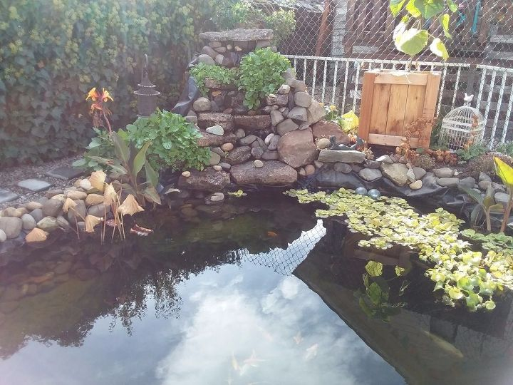 how to make functional koi pond with waterfall