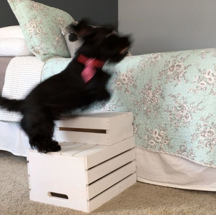s step by step turn crates into the perfect pieces for your home, Step 5 Let it dry and surprise your puppy
