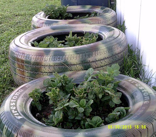 camoflauged but not hidden tire planters