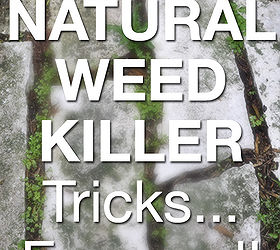 the truth about natural weed killer exposed