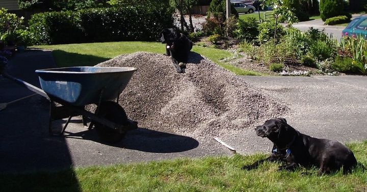amazing backyard transformation on a tiny budget