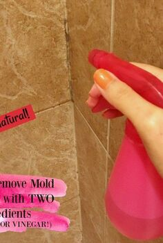 the best way to remove mold mildew with 2 ingredients no bleach
