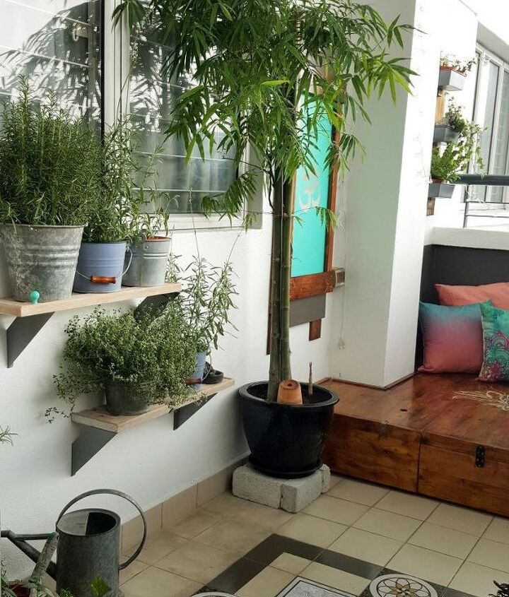 My bamboo plant and herb shelves