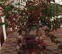 simply natural centerpiece, As Pilgrims pray