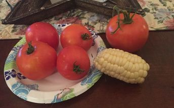 q my tomato question