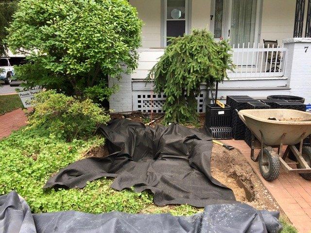 Basin excavation & Installation