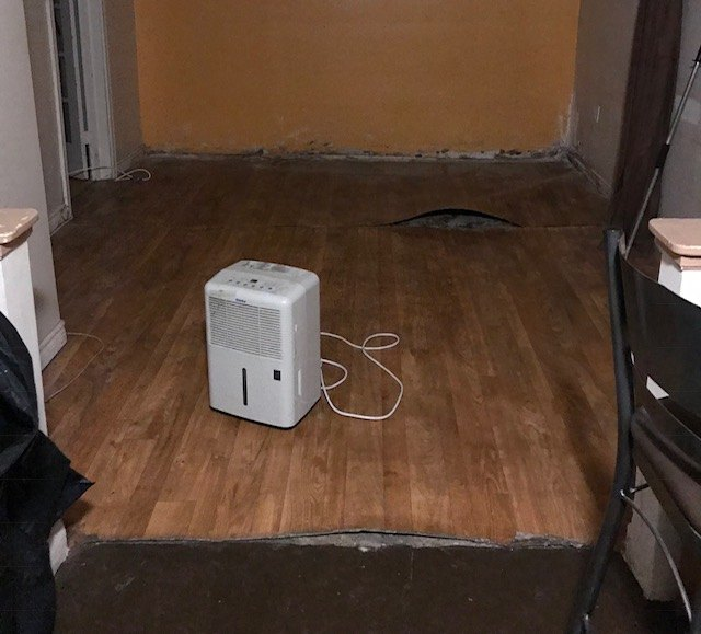 Installing Vinyl Plank Flooring In Basement