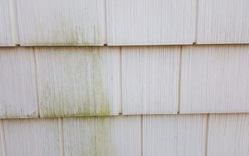 Clean Green Mold Off Vinyl Siding With Out a Pressure Washer!