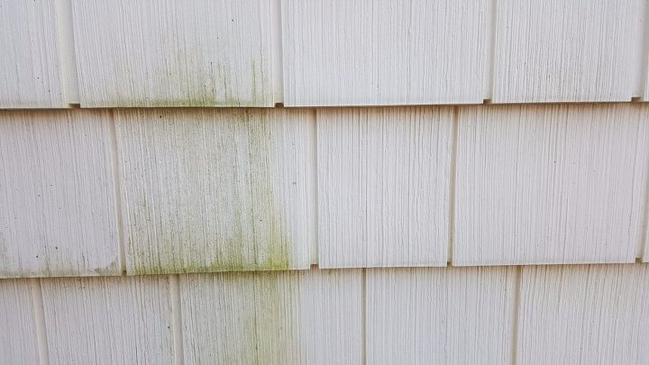 clean green mold off vinyl siding with out a pressure washer, Side by side