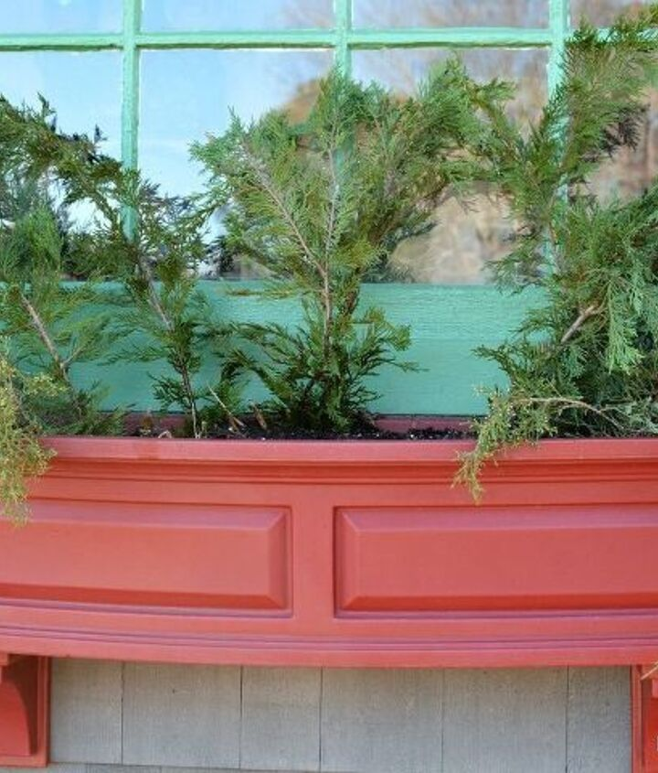 sprucing up window boxes with christmas greenery