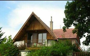 q wood house varnish