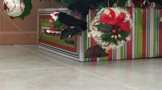 Christmas Tree Crate Skirt Diy Hometalk