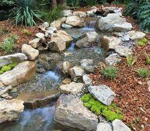 logan paul backyard pond