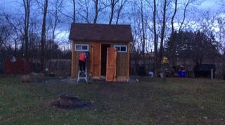 , Husband finishing our shed