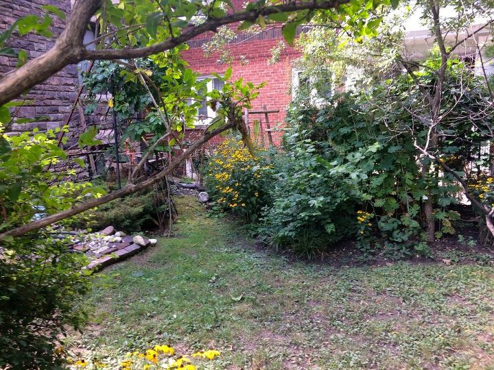 q how to create four season yard privacy between neighbours