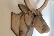 make your own mounted deer head
