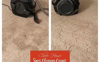 spot cleaning carpet with a diy solution