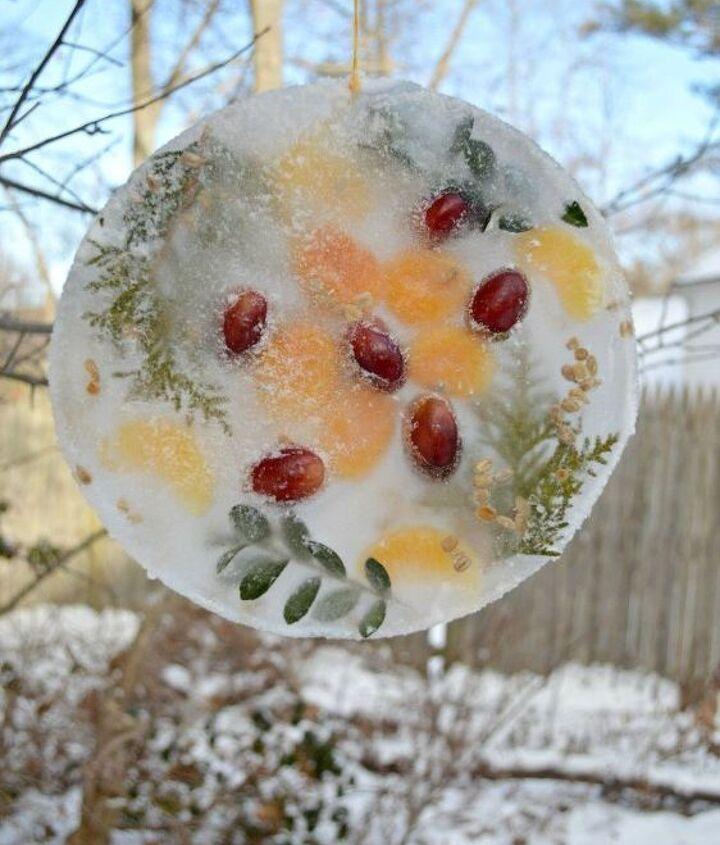 frozen sun catcher