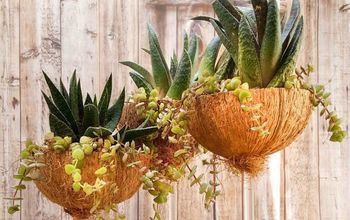 broken wine glasses turned into coconut planters