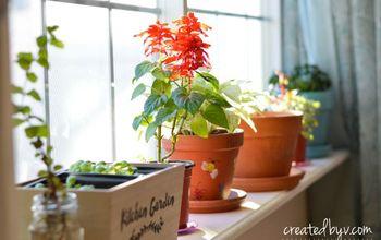 removable window shelf for plants