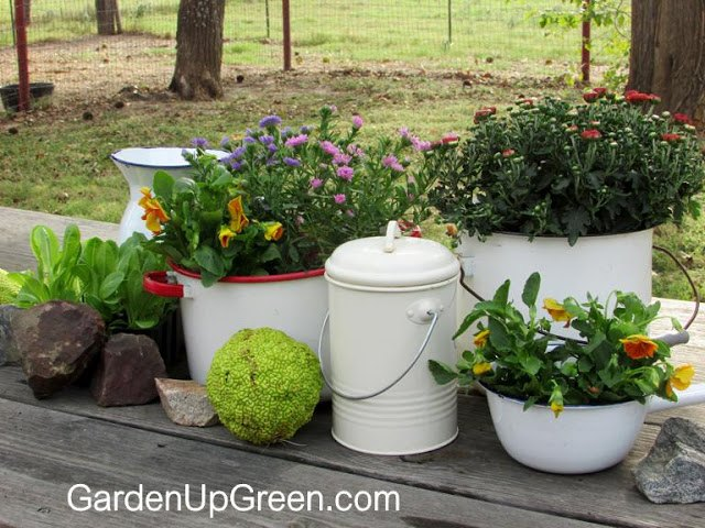 vintage white enamel for outdoor planting