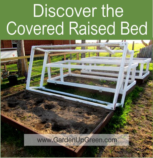 Gardening With Covered Raised Beds