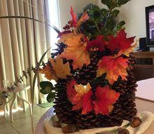 four seasons pine cone tree